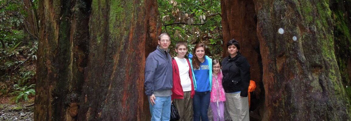 walkingtoursinmuirwoods